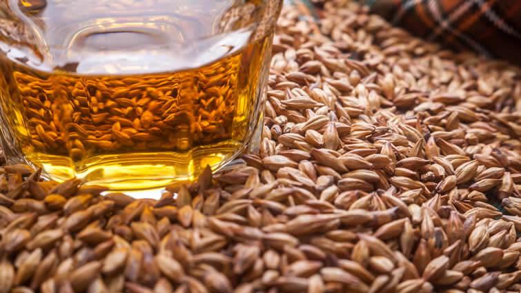 Whisky Herstellung Rohstoffe