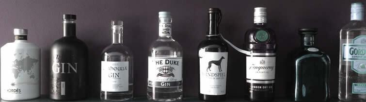 Gin Sorten